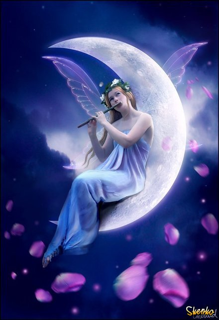 Fairies images
