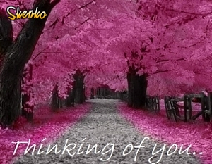 Thinking of you picture